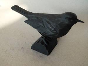 Gjutjärnsfågel/Koltrast